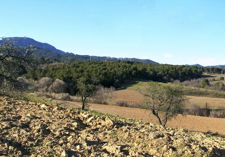 Vallès